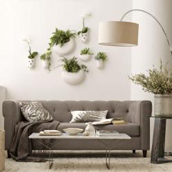 unique planters for your home