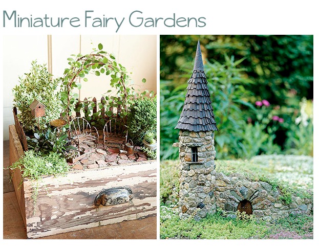 Using Plants in Your Home Part 5 Fairy Gardens They Arent