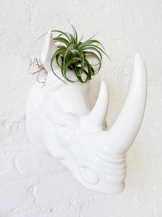 Using Plants In Your Home Part 3 Planters Indoors And Out