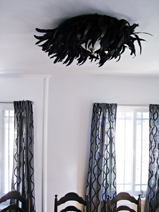 feather ceiling light