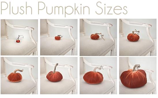 plush pumpkin sizes