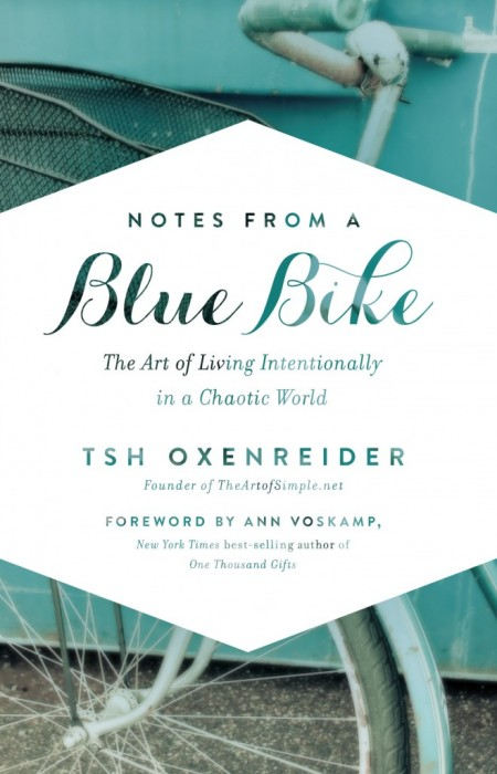 blue-bike-cover