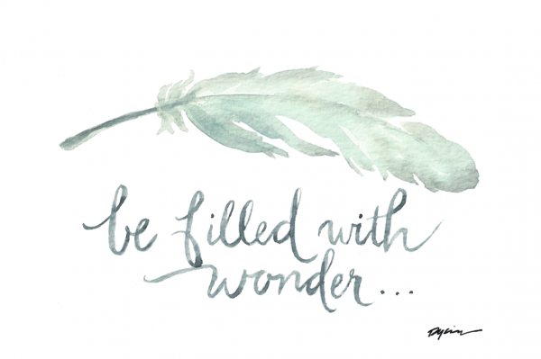 gracelaced wonder print