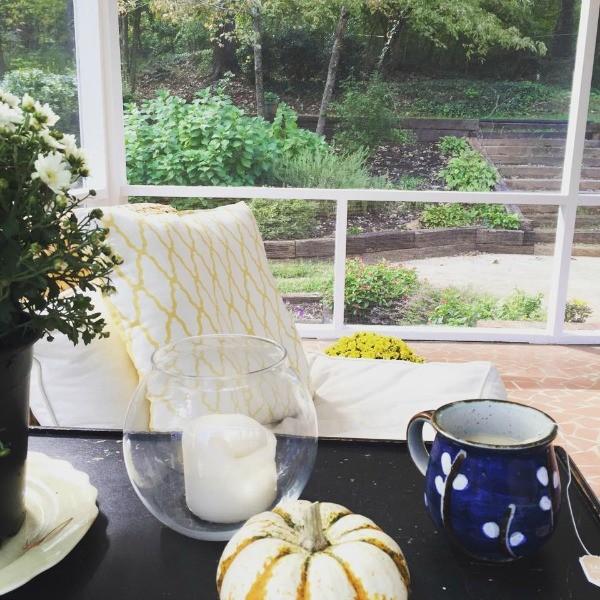 tea-on-the-screen-porch